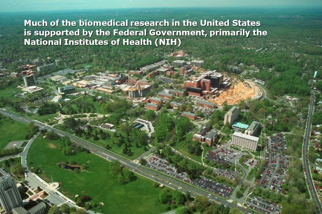 Much of the biomedical research in the United States is supported by the Federal Government, primarily the National Institutes of Health (NIH)