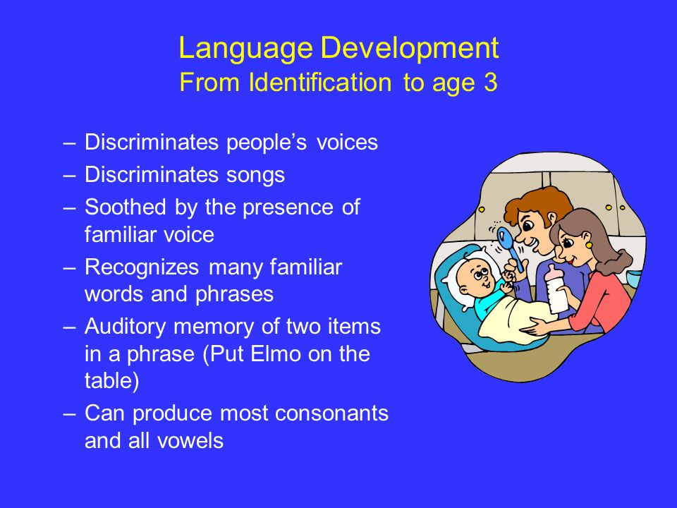 Language Development From Identification to age 3 –Discriminates peoples voices –Discriminates songs –Soothed by the presence of familiar voice –Recog