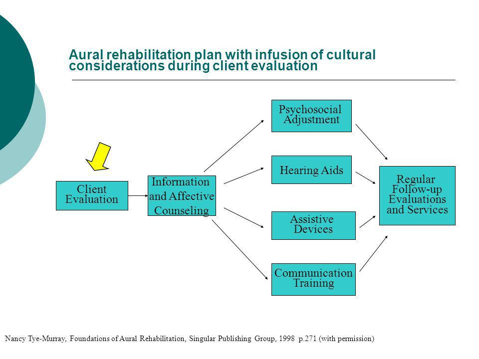 Aural rehabilitation plan with infusion of cultural considerations during client evaluation Client Evaluation Information and Affective Counseling Com