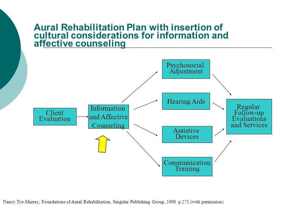 Aural Rehabilitation Plan with insertion of cultural considerations for information and affective counseling Client Evaluation Information and Affecti