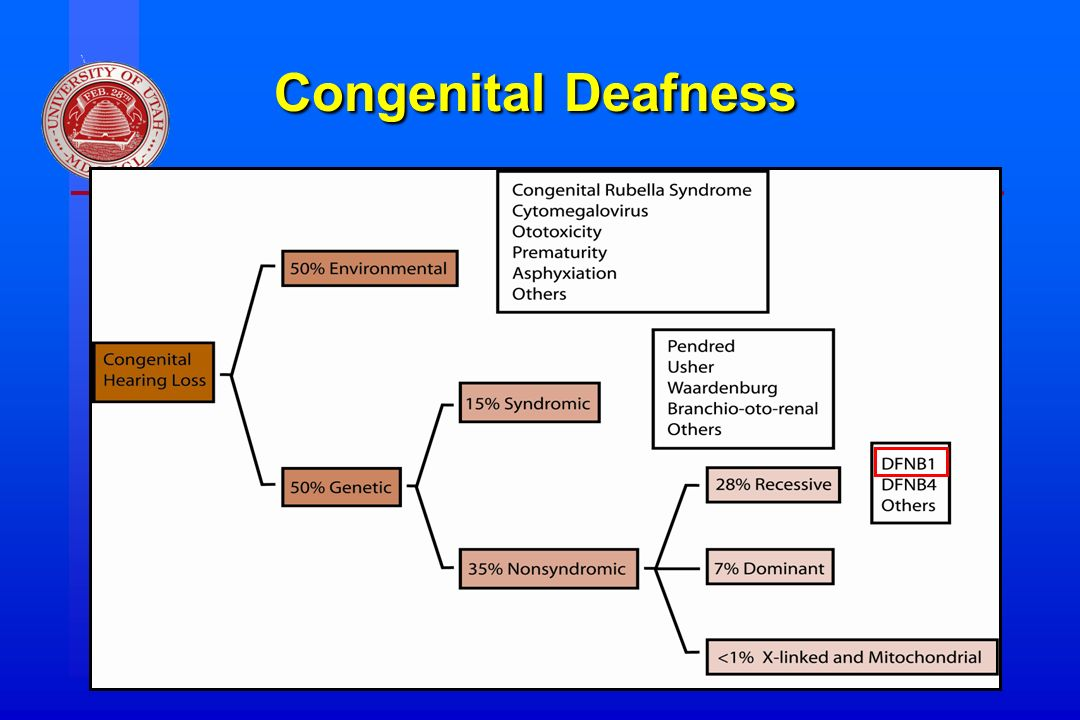 Division of Otolaryngology ~ Head & Neck Surgery, University of Utah Congenital Deafness