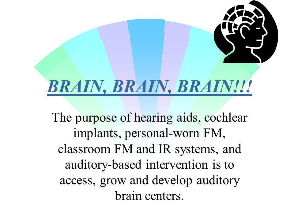 BRAIN, BRAIN, BRAIN!!! The purpose of hearing aids, cochlear implants, personal-worn FM, classroom FM and IR systems, and auditory-based intervention