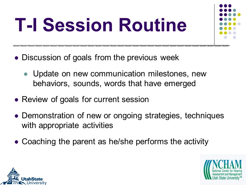 T-I Session Routine Discussion of goals from the previous week Update on new communication milestones, new behaviors, sounds, words that have emerged