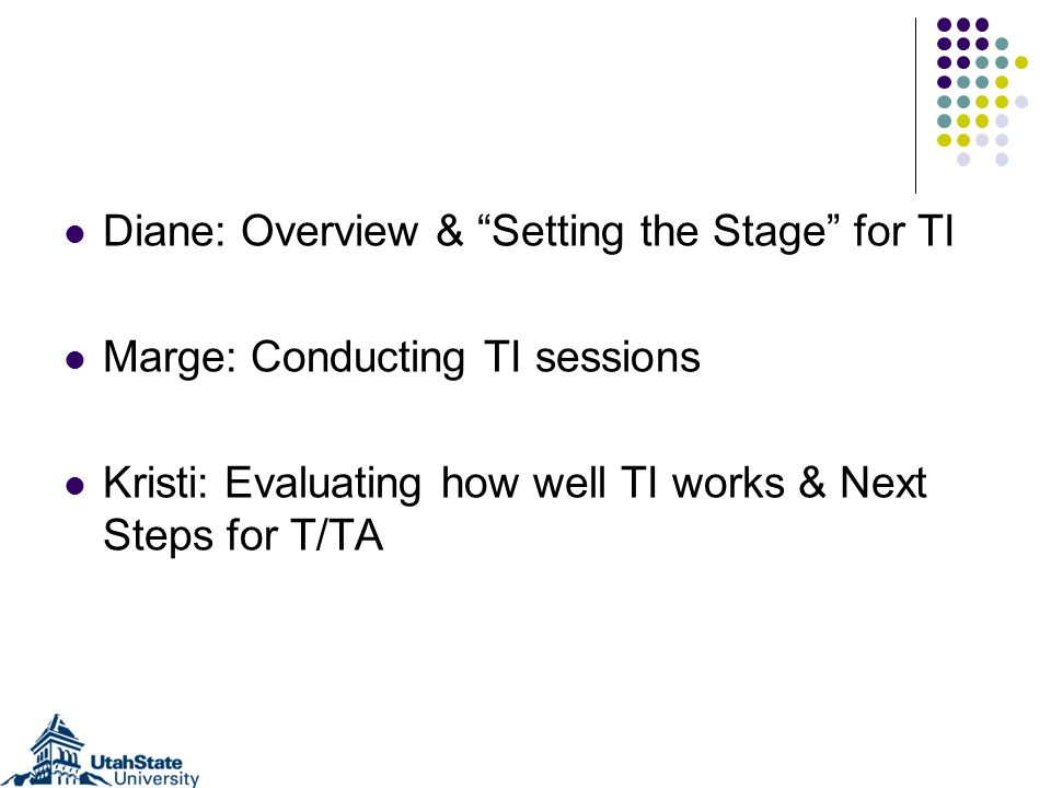 Diane: Overview & Setting the Stage for TI Marge: Conducting TI sessions Kristi: Evaluating how well TI works & Next Steps for T/TA
