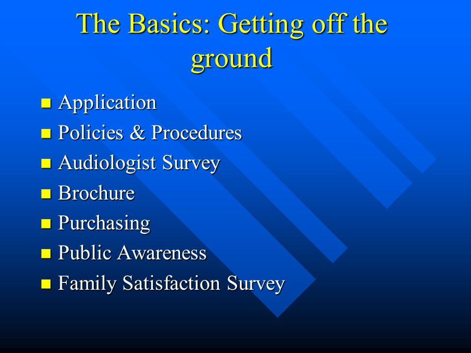 The Basics: Getting off the ground Application Application Policies & Procedures Policies & Procedures Audiologist Survey Audiologist Survey Brochure Brochure Purchasing Purchasing Public Awareness Public Awareness Family Satisfaction Survey Family Satisfaction Survey