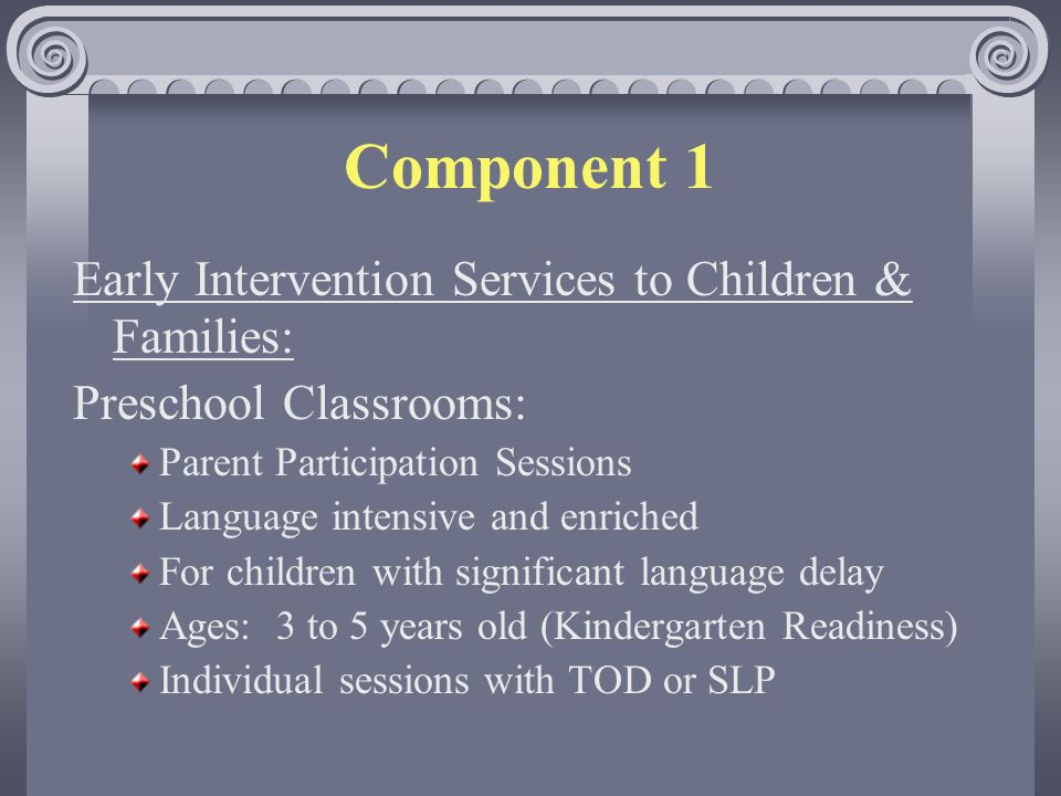 Early Intervention Services to Children & Families: Preschool Classrooms: Parent Participation Sessions Language intensive and enriched For children with significant language delay Ages: 3 to 5 years old (Kindergarten Readiness) Individual sessions with TOD or SLP Component 1