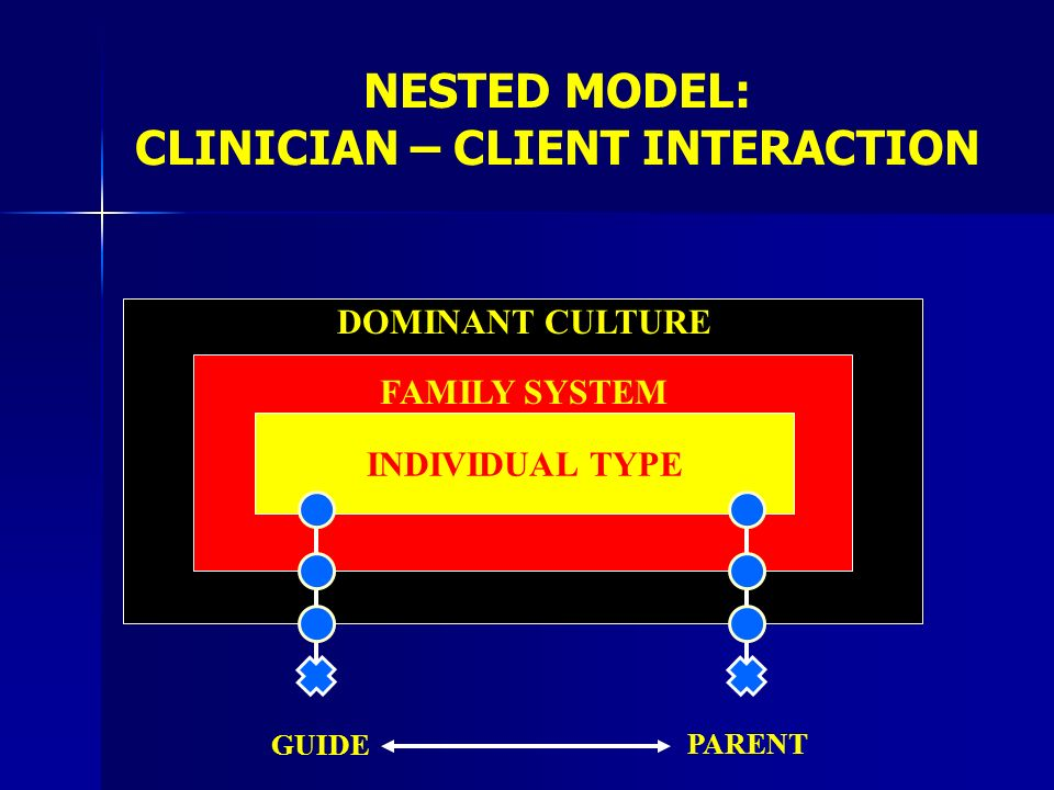 NESTED MODEL: CLINICIAN – CLIENT INTERACTION INDIVIDUAL TYPE FAMILY SYSTEM DOMINANT CULTURE GUIDE PARENT