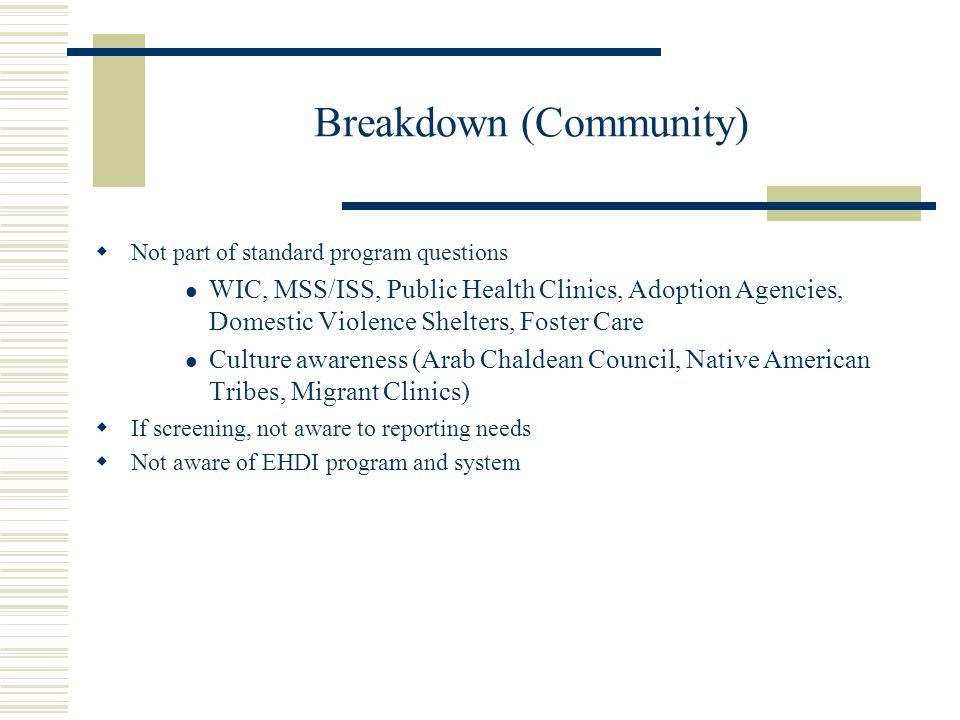 Breakdown (Community) Not part of standard program questions WIC, MSS/ISS, Public Health Clinics, Adoption Agencies, Domestic Violence Shelters, Foster Care Culture awareness (Arab Chaldean Council, Native American Tribes, Migrant Clinics) If screening, not aware to reporting needs Not aware of EHDI program and system