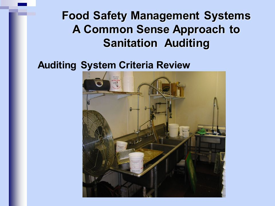 Auditing System Criteria Review Food Safety Management Systems A Common Sense Approach to Sanitation Auditing