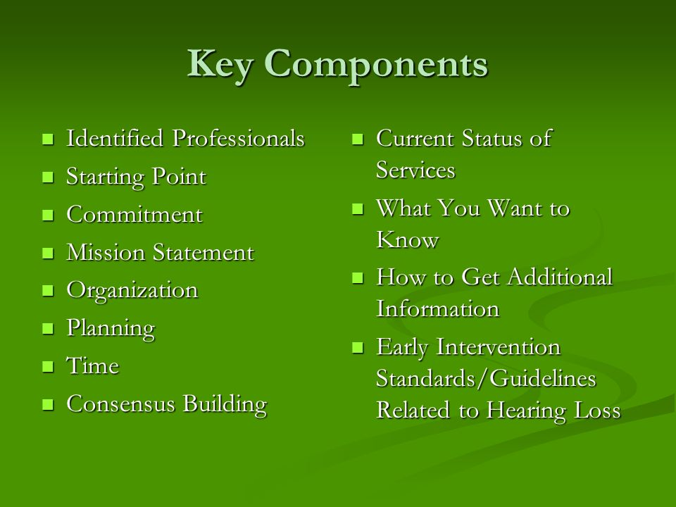 Key Components Identified Professionals Identified Professionals Starting Point Starting Point Commitment Commitment Mission Statement Mission Statement Organization Organization Planning Planning Time Time Consensus Building Consensus Building Current Status of Services What You Want to Know How to Get Additional Information Early Intervention Standards/Guidelines Related to Hearing Loss