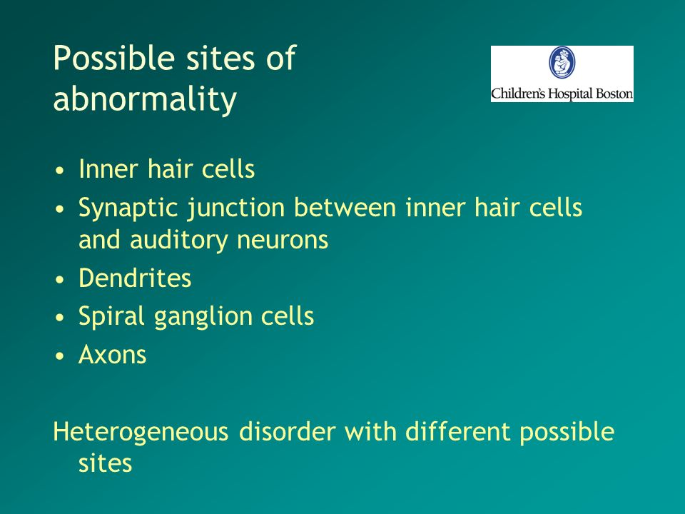 Possible sites of abnormality Inner hair cells Synaptic junction between inner hair cells and auditory neurons Dendrites Spiral ganglion cells Axons H