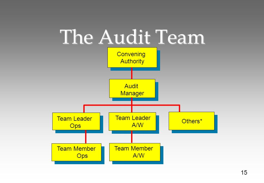 The Audit Team Convening Authority Audit Manager Team Leader Ops Others* 15 Team Leader A/W Team Member Ops Team Member A/W