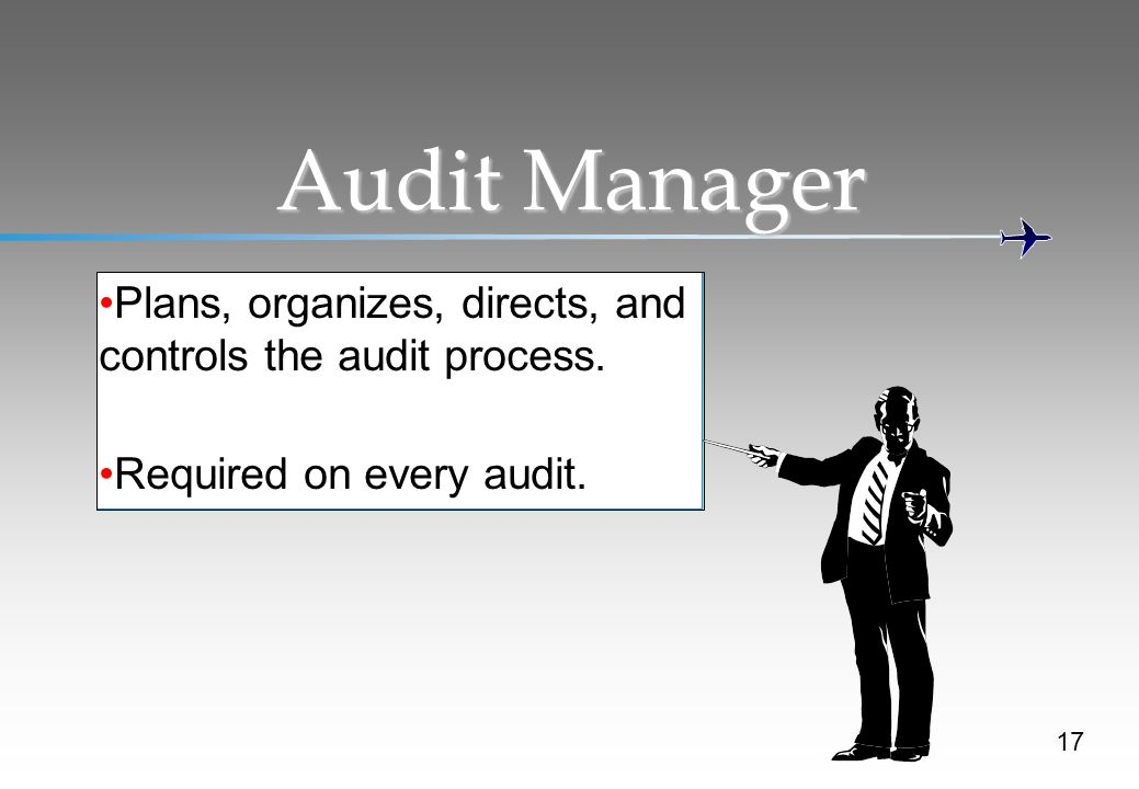 Audit Manager Plans, organizes, directs, and controls the audit process.