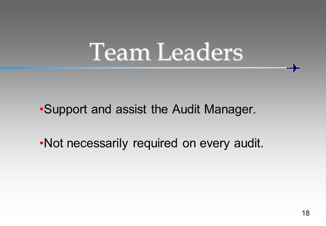 Team Leaders Support and assist the Audit Manager. Not necessarily required on every audit. 18
