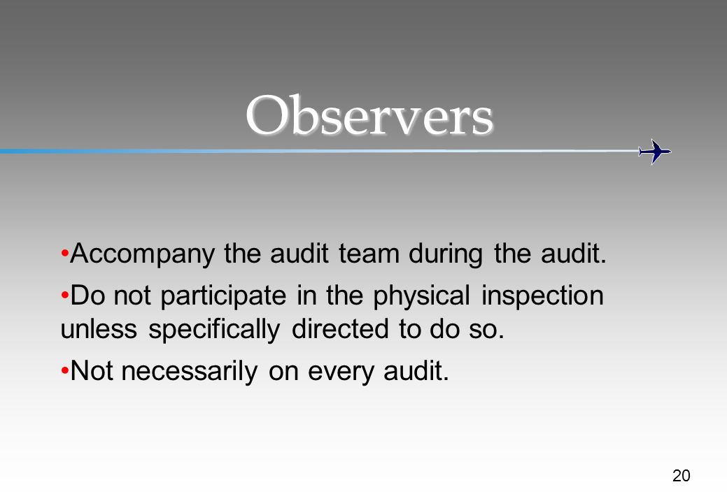 Observers Accompany the audit team during the audit.