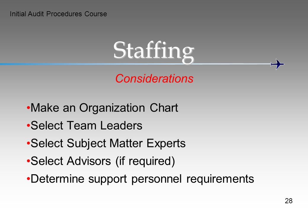 Initial Audit Procedures Course Staffing Considerations Make an Organization Chart Select Team Leaders Select Subject Matter Experts Select Advisors (if required) Determine support personnel requirements 28