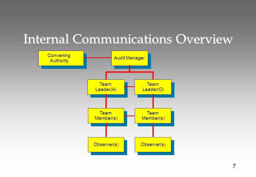 Internal Communications Overview Convening Authority Audit Manager Team Leader(A) Team Leader(O) Team Member(s) Observer(s) 7