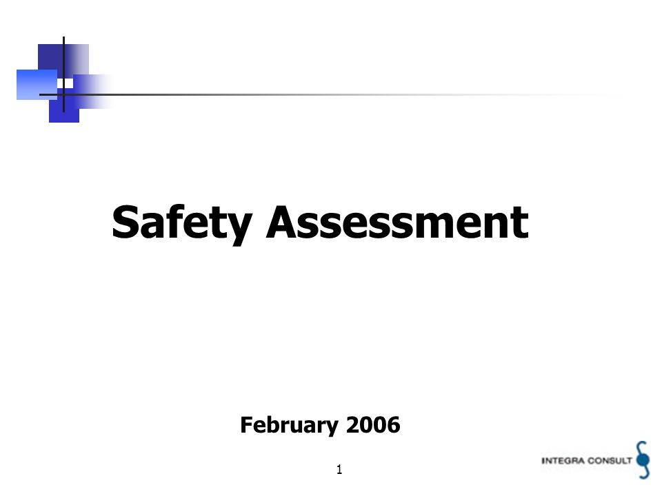 1 Safety Assessment February 2006