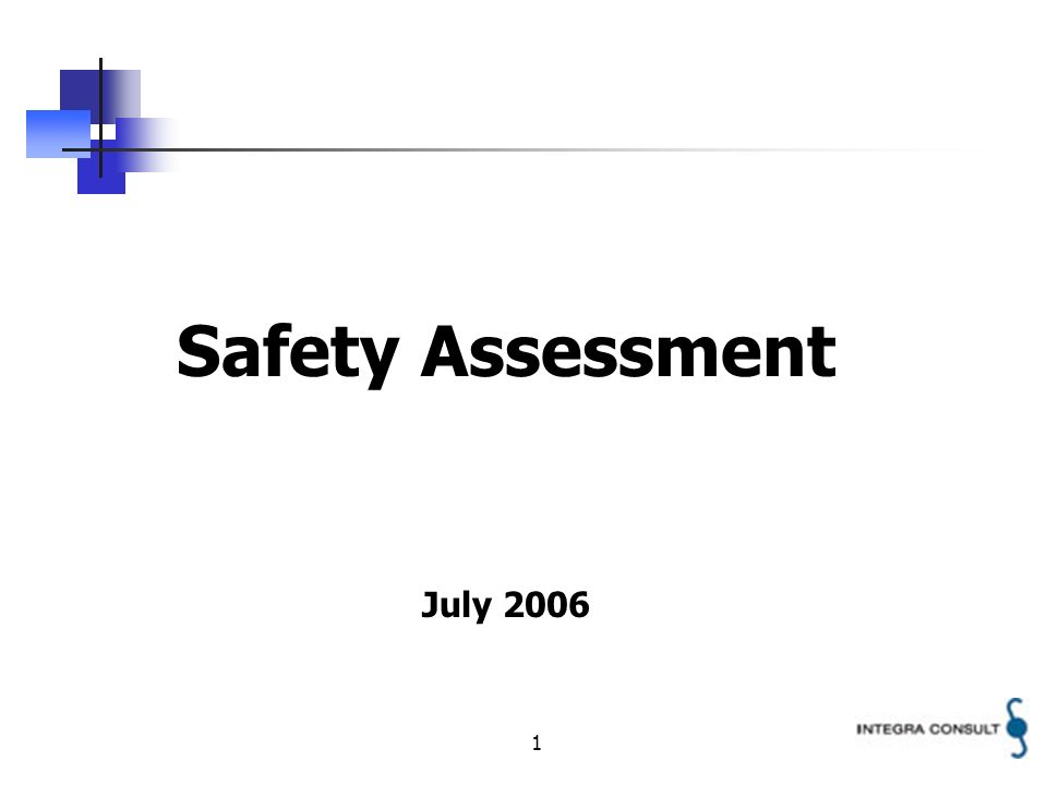 1 Safety Assessment July 2006