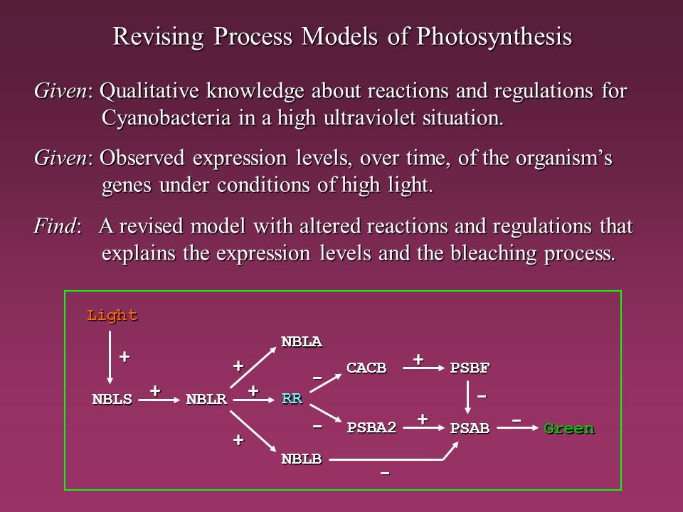 Revising Process Models of Photosynthesis Given: Observed expression levels, over time, of the organisms genes under conditions of high light. Find: A