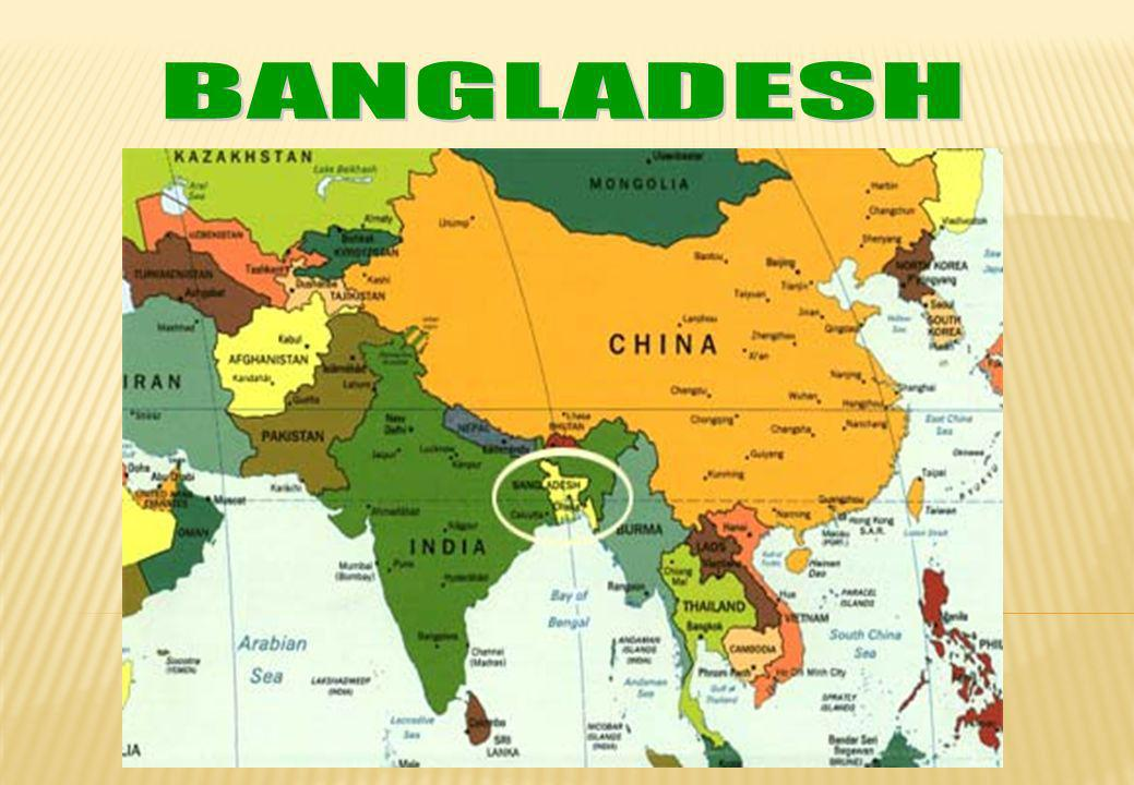 An overview on CAA Bangladesh