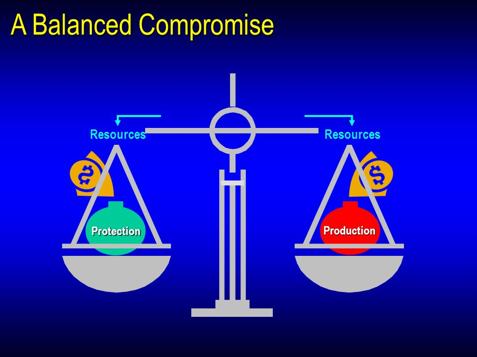A Balanced Compromise Production Protection Resources