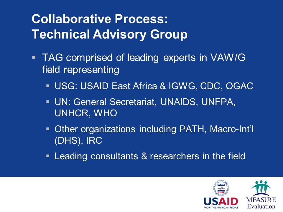 Collaborative Process: Technical Advisory Group TAG comprised of leading experts in VAW/G field representing USG: USAID East Africa & IGWG, CDC, OGAC UN: General Secretariat, UNAIDS, UNFPA, UNHCR, WHO Other organizations including PATH, Macro-Intl (DHS), IRC Leading consultants & researchers in the field