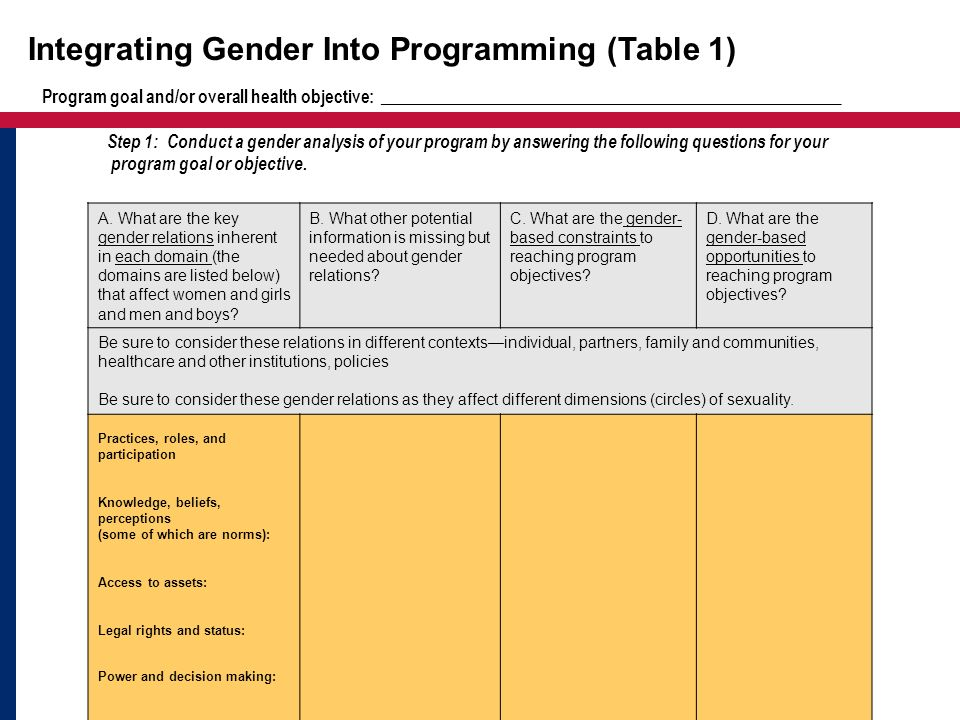 Integrating Gender Into Programming (Table 1) A. What are the key gender relations inherent in each domain (the domains are listed below) that affect