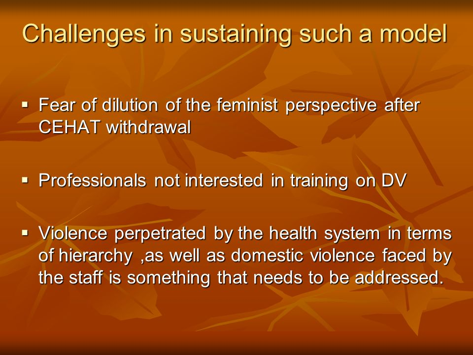 Challenges in sustaining such a model Fear of dilution of the feminist perspective after CEHAT withdrawal Fear of dilution of the feminist perspective after CEHAT withdrawal Professionals not interested in training on DV Professionals not interested in training on DV Violence perpetrated by the health system in terms of hierarchy,as well as domestic violence faced by the staff is something that needs to be addressed.