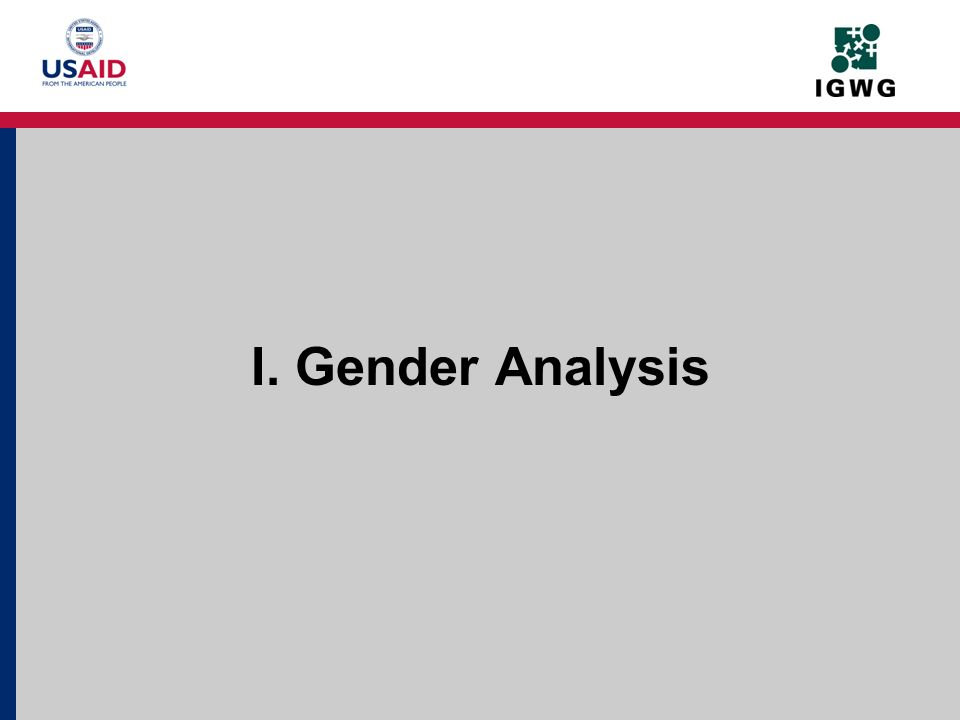 What is Gender Analysis.