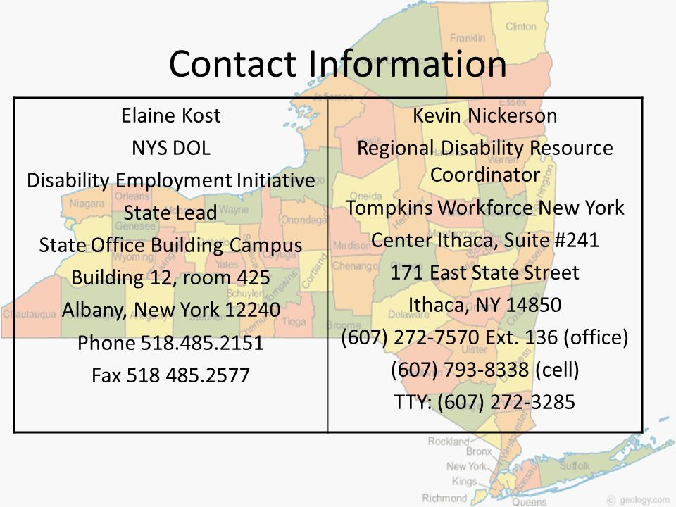 Contact Information Elaine Kost NYS DOL Disability Employment Initiative State Lead State Office Building Campus Building 12, room 425 Albany, New Yor