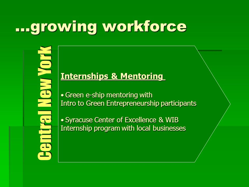 …growing workforce Internships & Mentoring Green e-ship mentoring withGreen e-ship mentoring with Intro to Green Entrepreneurship participants Syracuse Center of Excellence & WIBSyracuse Center of Excellence & WIB Internship program with local businesses Central New York