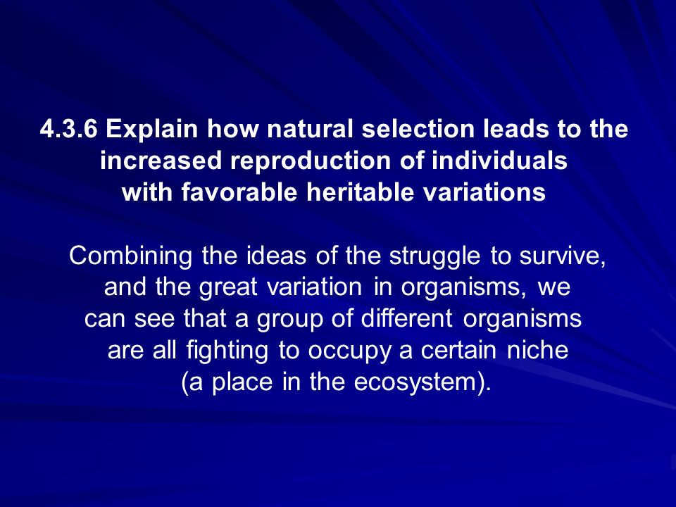 4.3.6 Explain how natural selection leads to the increased reproduction of individuals with favorable heritable variations Combining the ideas of the