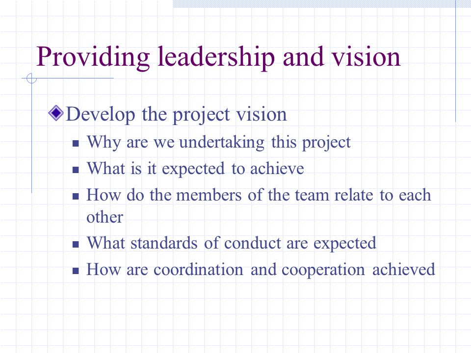 Providing leadership and vision Develop the project vision Why are we undertaking this project What is it expected to achieve How do the members of th