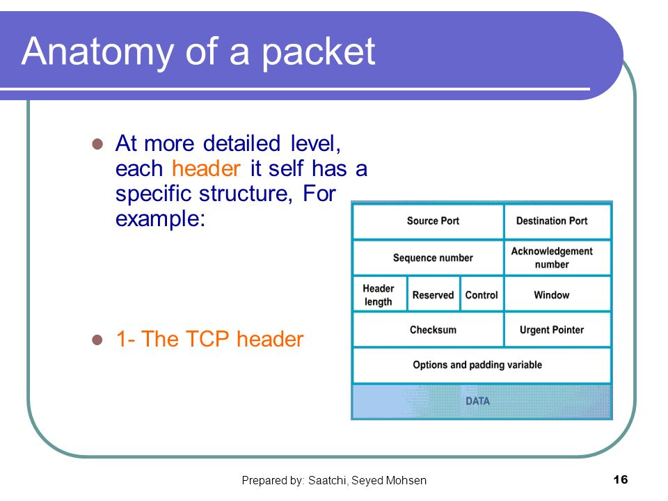 Prepared by: Saatchi, Seyed Mohsen16 Anatomy of a packet At more detailed level, each header it self has a specific structure, For example: 1- The TCP header
