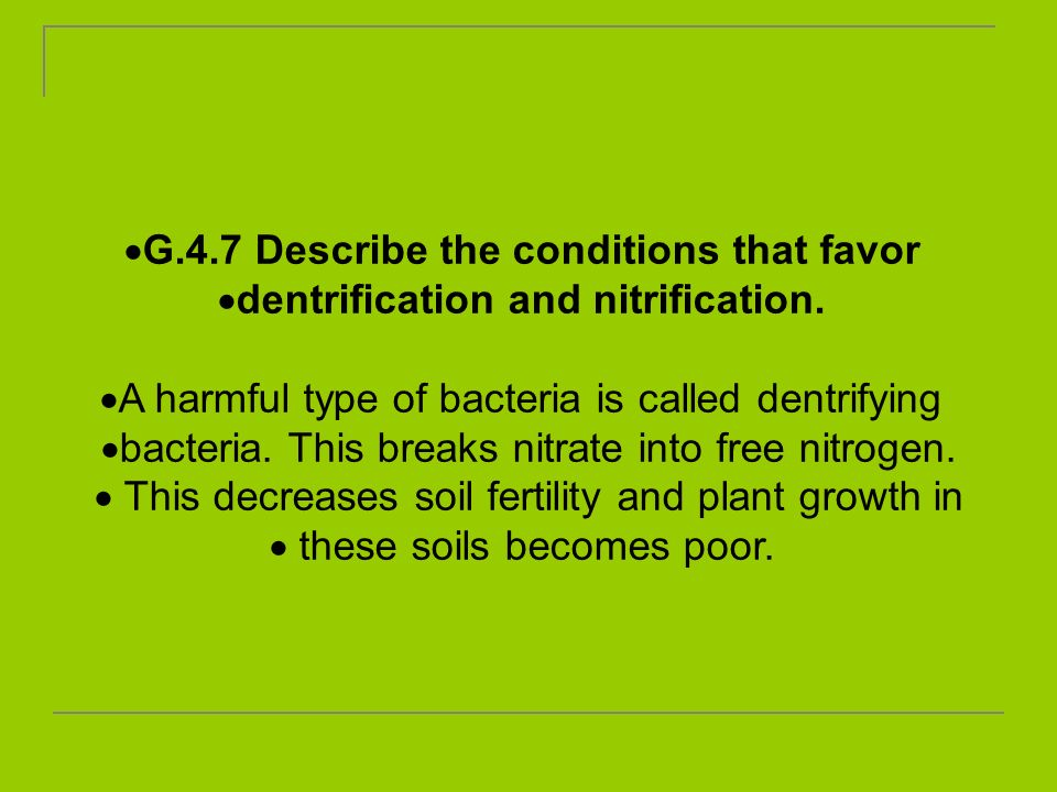 G.4.7 Describe the conditions that favor dentrification and nitrification. A harmful type of bacteria is called dentrifying bacteria. This breaks nitr