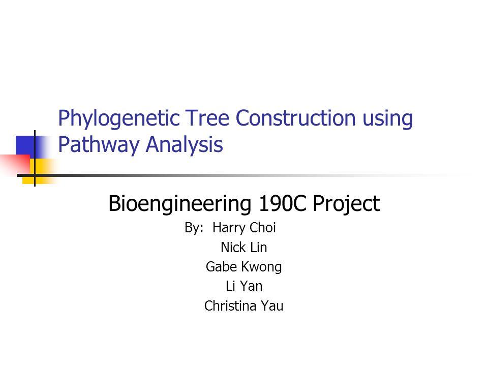 Phylogenetic Tree Construction using Pathway Analysis Bioengineering 190C Project By: Harry Choi Nick Lin Gabe Kwong Li Yan Christina Yau