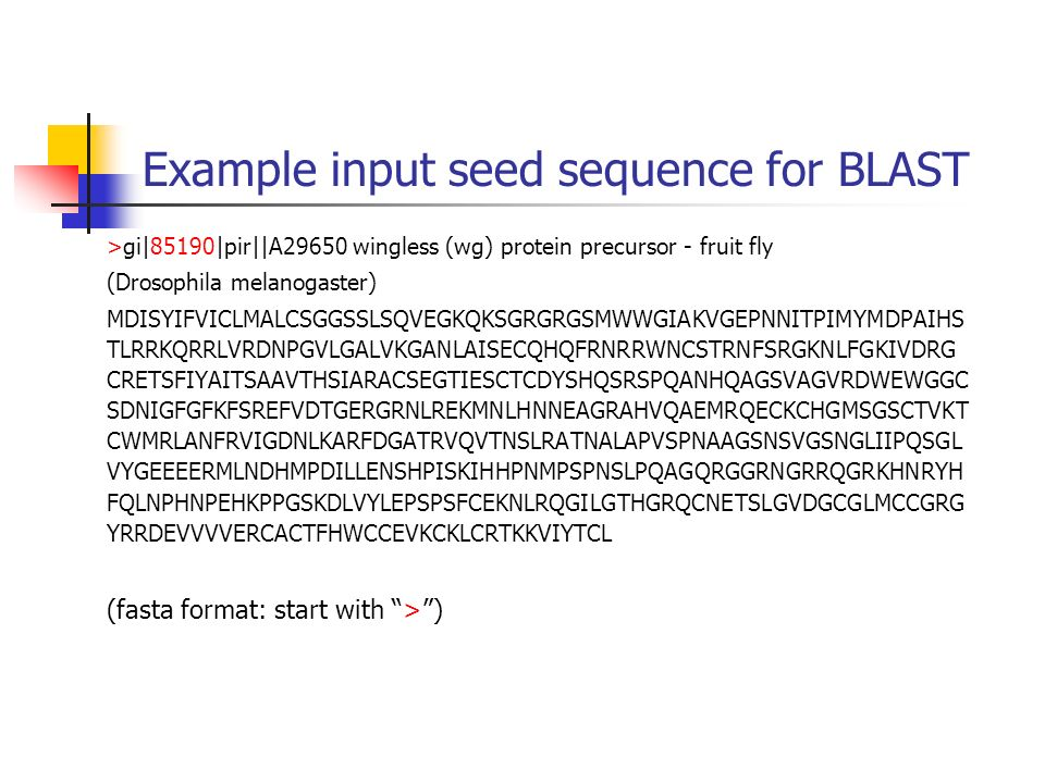 Example input seed sequence for BLAST >gi|85190|pir||A29650 wingless (wg) protein precursor - fruit fly (Drosophila melanogaster) MDISYIFVICLMALCSGGSS