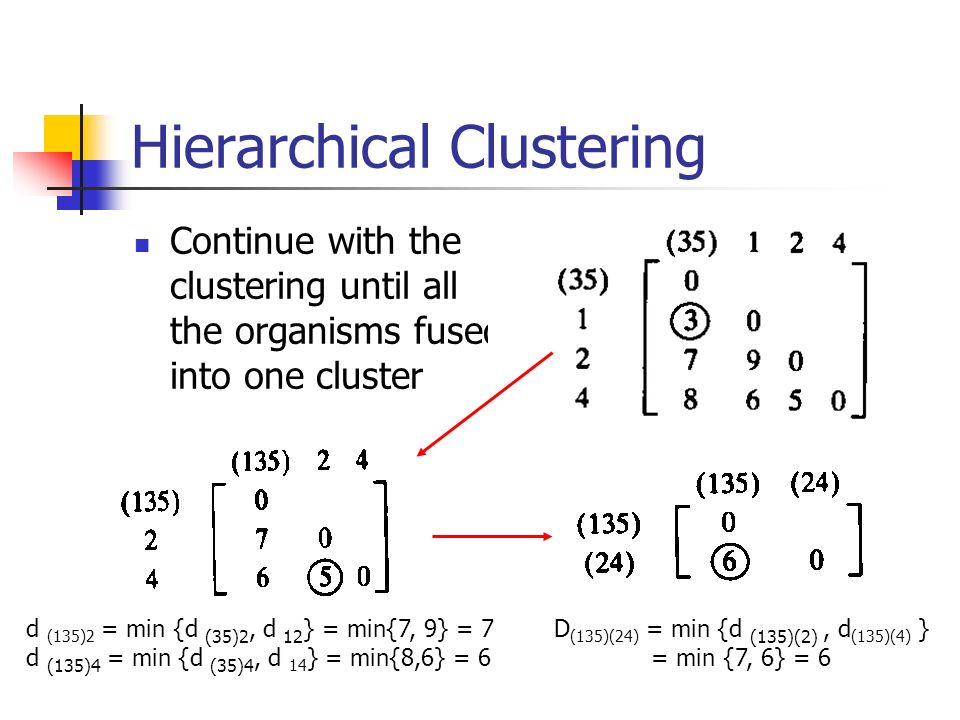 Hierarchical Clustering Continue with the clustering until all the organisms fused into one cluster D (135)(24) = min {d (135)(2), d (135)(4) } = min {7, 6} = 6 d (135)2 = min {d (35)2, d 12 } = min{7, 9} = 7 d (135)4 = min {d (35)4, d 14 } = min{8,6} = 6