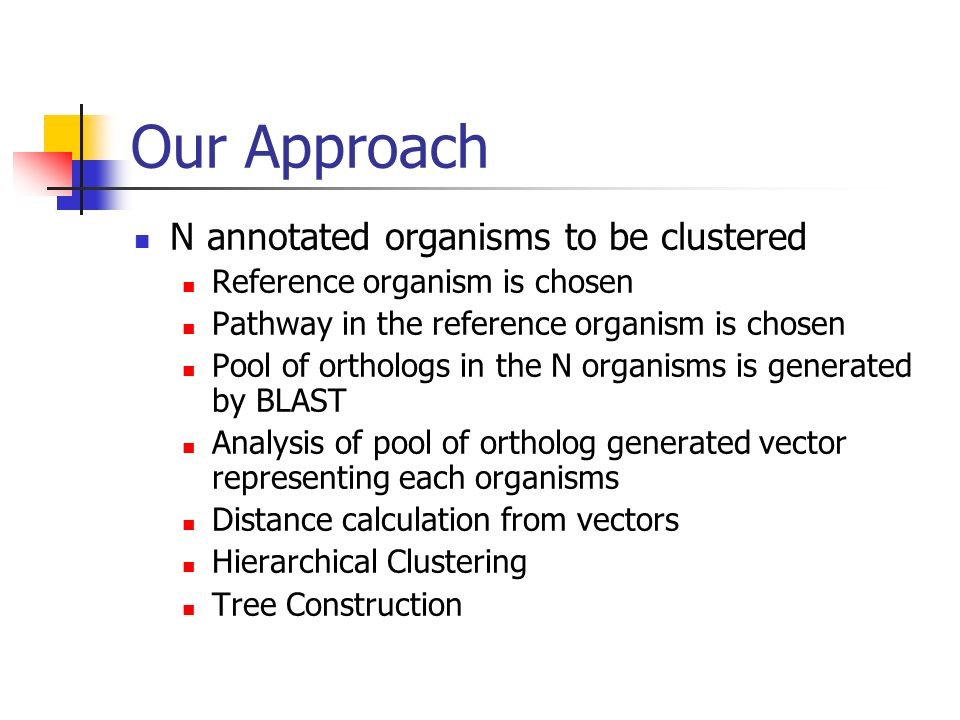 Our Approach N annotated organisms to be clustered Reference organism is chosen Pathway in the reference organism is chosen Pool of orthologs in the N organisms is generated by BLAST Analysis of pool of ortholog generated vector representing each organisms Distance calculation from vectors Hierarchical Clustering Tree Construction