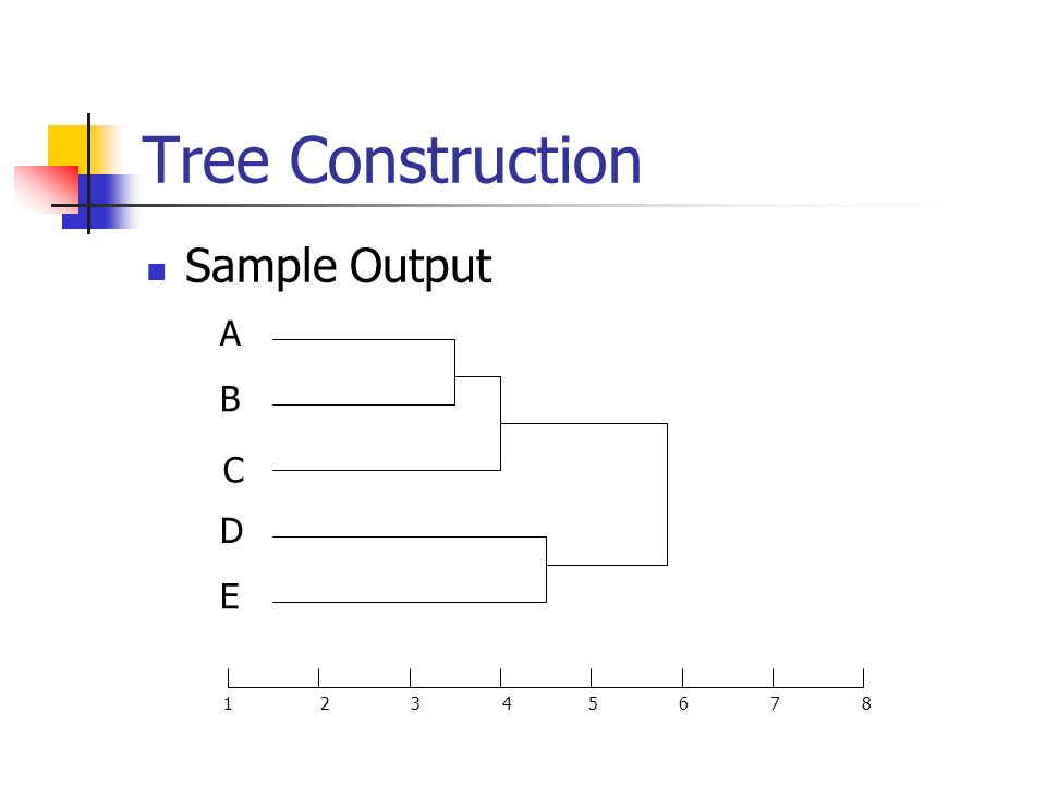 Tree Construction Sample Output A B C D E 1 2 3 4 5 6 7 8