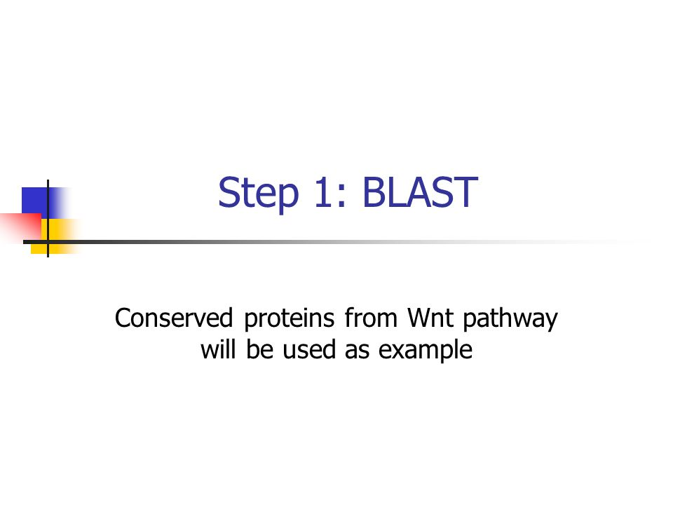 Step 1: BLAST Conserved proteins from Wnt pathway will be used as example