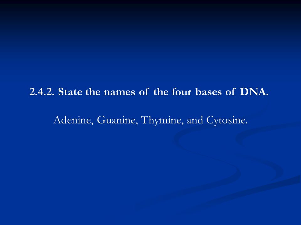2.4.2. State the names of the four bases of DNA. Adenine, Guanine, Thymine, and Cytosine.