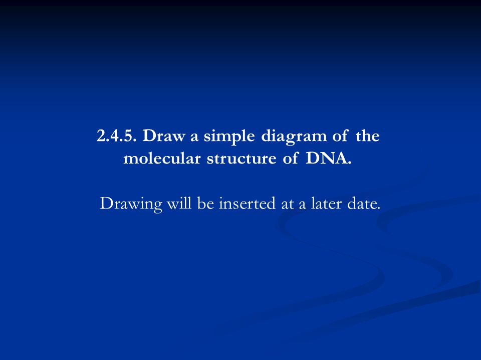 2.4.5. Draw a simple diagram of the molecular structure of DNA. Drawing will be inserted at a later date.