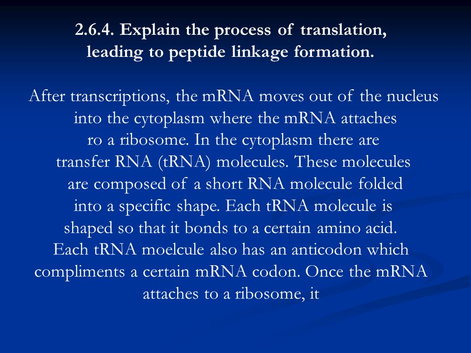 2.6.4. Explain the process of translation, leading to peptide linkage formation. After transcriptions, the mRNA moves out of the nucleus into the cyto