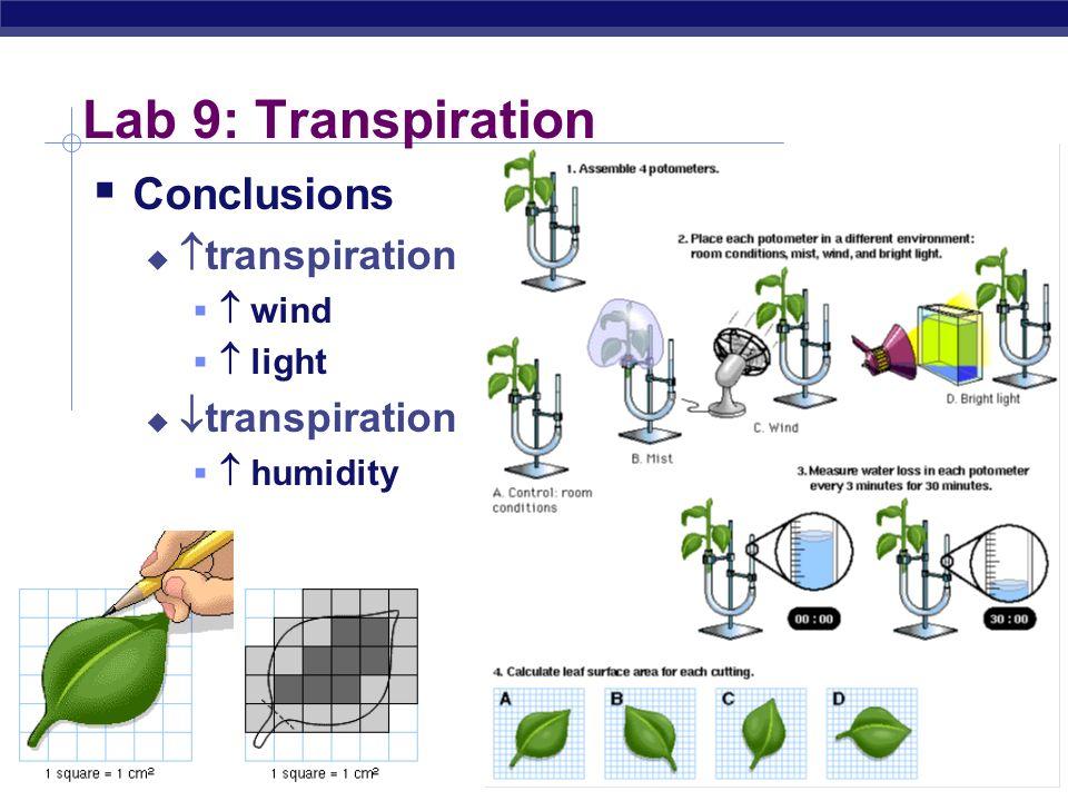AP Biology 2004-2005 Lab 9: Transpiration Conclusions transpiration wind light transpiration humidity