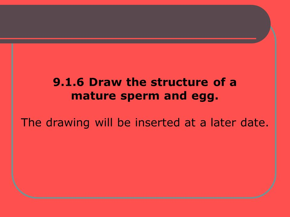 9.1.6 Draw the structure of a mature sperm and egg. The drawing will be inserted at a later date.