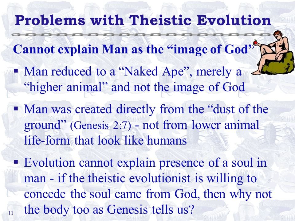 11 Problems with Theistic Evolution Cannot explain Man as the image of God §Man reduced to a Naked Ape, merely a higher animal and not the image of Go
