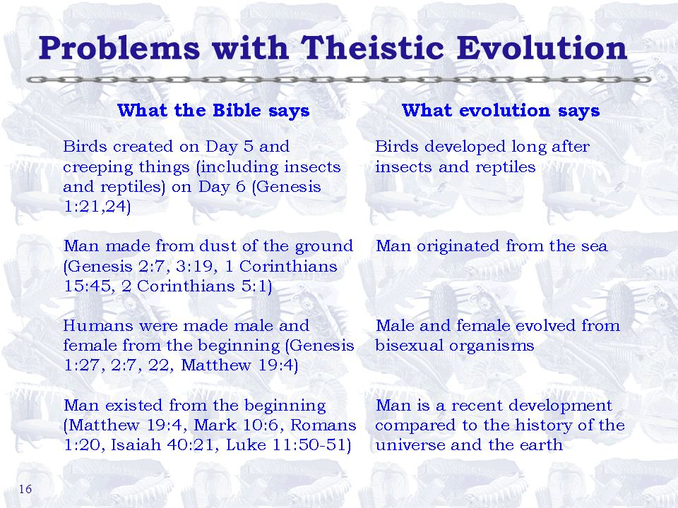 16 Problems with Theistic Evolution