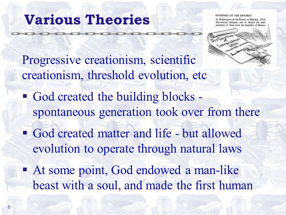 6 Various Theories Progressive creationism, scientific creationism, threshold evolution, etc §God created the building blocks - spontaneous generation